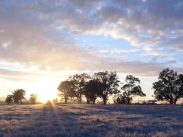 Frosty morning sunrise by Lindalees