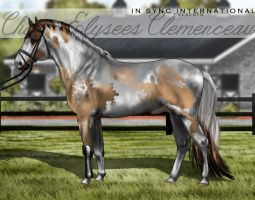 ISI Champ Elysees Clemenceau by Decorum100