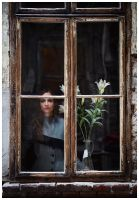 Window Widow. by saturninus