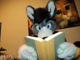 Nose In Book by videogamer500
