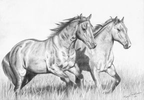 Running by silver-spurs
