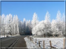 Winter 2009 by M10tje