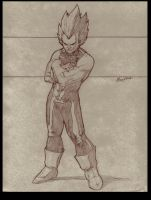 Vegeta by Gay-san