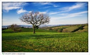 Tuscany Land by Marcello-Paoli
