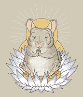 Chinchilla Nirvana by angelac