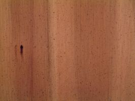 Wood Texture 1 by Riverd-Stock