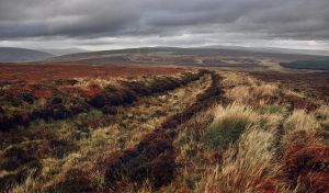The old peat path. by younghappy