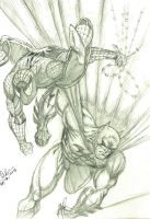 Batman and Spiderman by dushans