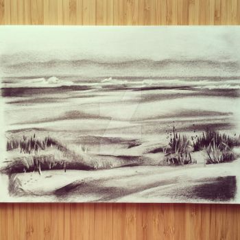 Charcoal Shoreline by sirenehaven