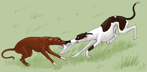 Lure Course Love by swift-whippet