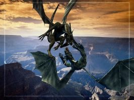 Dragon Fight by Qutey