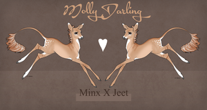 Minx X Jeet Fawn Design by SunsetRevelation