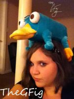 No Worries, I Found Perry by TheRealTDAGeena