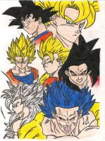 Goku Stages by sylargrey11