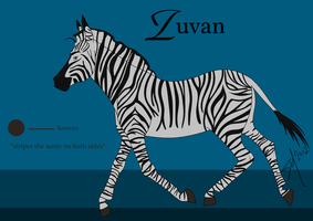 Zuvan Reference Sheet by FaeTian