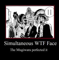 Mugiwara WTF faces by Tonlor
