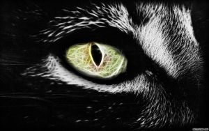 Cat eye abstract by Michalius89