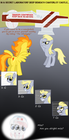 The Spin Cycle by Fetchbeer