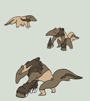 Rock...Anteaters. There is no pun here. by m-i-r-r-o-r