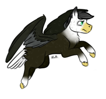 Birdy Pony Adopt [CLOSED] by KatPocketMonster