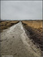 On A Road to Nowhere by Arawn-Photography