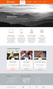 froosix Design Studios - Relaunch 2013 by synthes