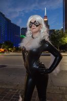 Black Cat - Love the Cityscape by Kyatto