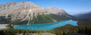 Peyto Lake by RaymondW