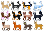 Cat Adoptables OPEN! by SparksHumbleAbode