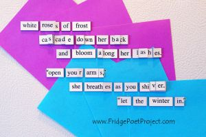 The Daily Magnet #251 by FridgePoetProject