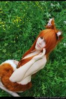 Spice and Wolf - Horo 34 by namstar91
