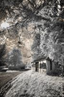 Last house on the left by jeje62