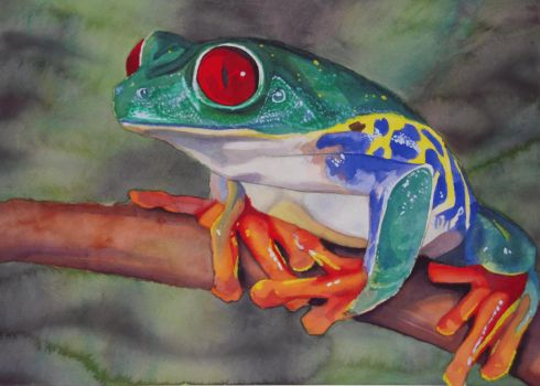 Red-Eyed Tree Frog by xf85silverwolf