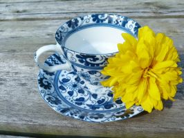 Tea Cup ++ Flower by Imaginationsis