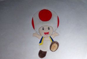 Toad drawing by slashclaws1