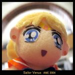 Sailor V by andricongirl