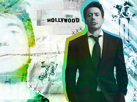 Screw Hollywood RDJ wall by Tiate