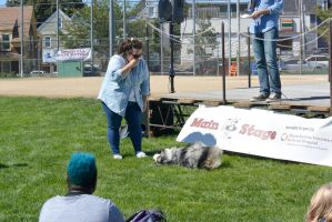 2014 Dog Festival, Best Trick Contest 2 by Miss-Tbones