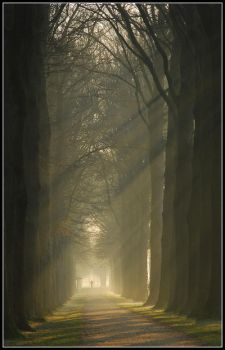 Cycling towards the light by jchanders