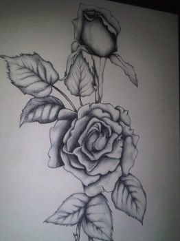 roses are grey by MattyMcGinnis