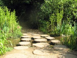 Stepping stones 01 by gabriella-stock