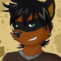 Birthday Bandit Icon by Stripes-the-Raccoon
