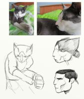 just drawing by Chukgert