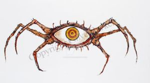Fugit's Eye by CliveBarker