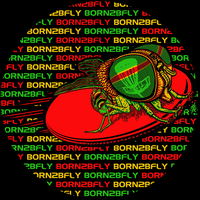 BORN2BFLY Disc Golf Logo 2012 by BEYONDtheDISC