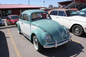Two-Toned Beetle by KyleAndTheClassics