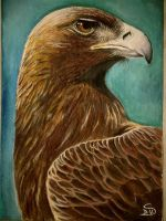 Eagle by Nissa978