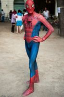 Rimini Comics 09: Spiderman 1 by LarsVanDrake