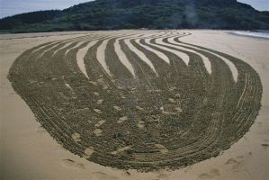 Sand Drawing by art4oceans
