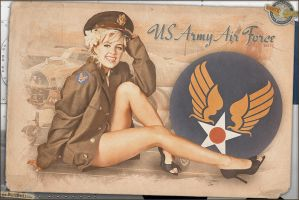Pinups - USAAF Tribute by warbirdphotographer